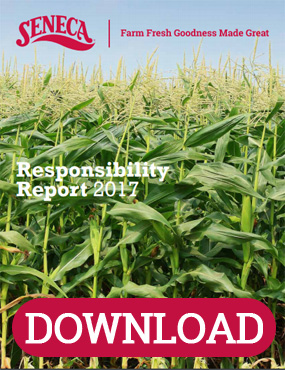 Responsibility Report Download